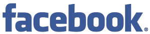 facebook logo mini